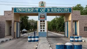 list of courses offered in unimaid